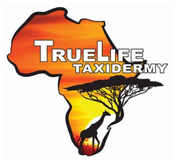 TrueLife Taxidermy