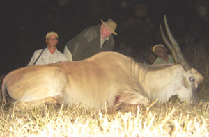 "Monster 38"" Eland with Paul, Robert and Willy"